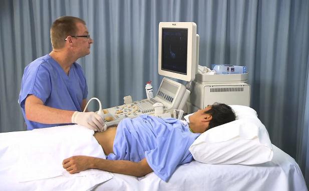 Webbasiertes Simulationsmodul / Anatomie / für Ultraschall ...