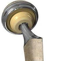 Zementfrei Acetabulum prothese
