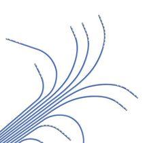 Katheter / elektrophysiologisches Monitoring / für Herz