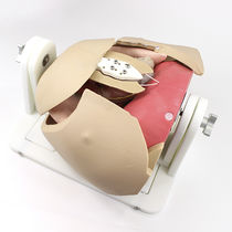 Simulator für minimalinvasive Chirurgie / für Herzchirurgie / Brust