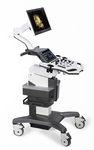 Ultraschallgerät auf Plattform, kompakt / für Ultraschalldiagnostik Gynäkologie und Geburtshilfe / für urologische Diagnostik / Schwarz-Weiss