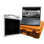 Flachbilddetektor für Veterinär-Radiologie / tragbar