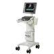 Ultraschallgerät auf Plattform / für Kardiologie / für Ultraschalldiagnostik Notfallmedizin