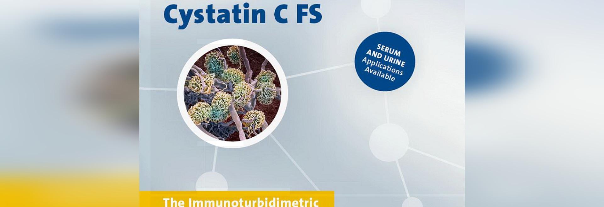 Cystatin C FS