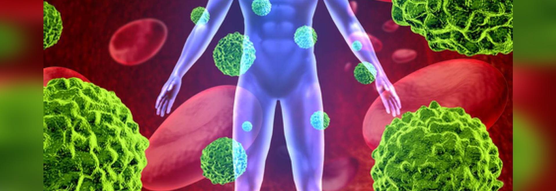 Gründliche Analyse deckt Immunsystemdynamik nach Immunotherapy auf