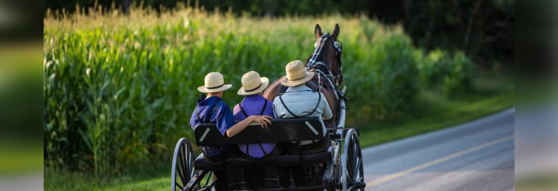 Lokalisierte amische Gruppe trägt Anti-Altern Gen