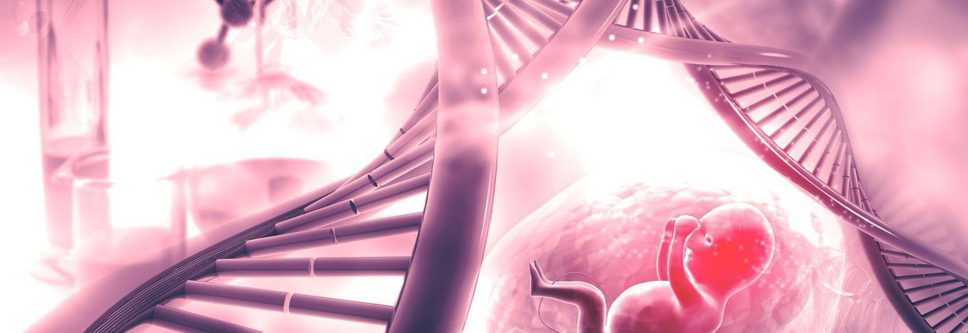 Pränatale Diagnose seltener Krankheiten: Der Beginn der nicht-invasiven Methoden