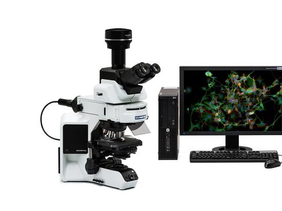Mikroskop kamera bietet realzeitfluoreszenz darstellung an unit 5