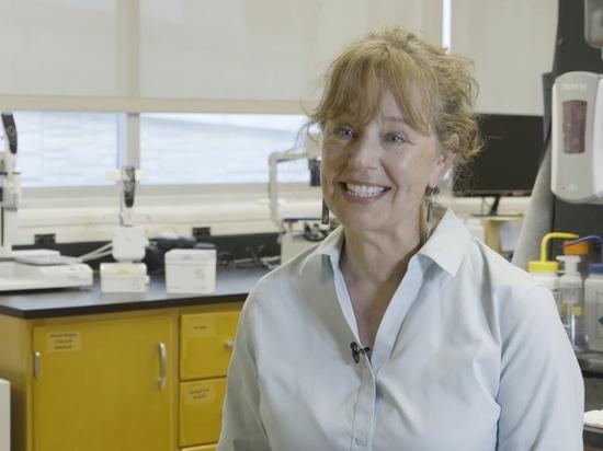 Automatisierung Anfangsstadium-Proben-Entwicklung der auf Zellenbasis