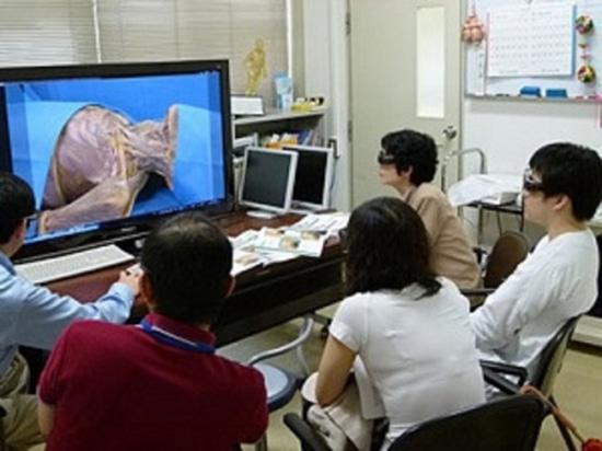 Eine virtuelle 3-D Zerlegung