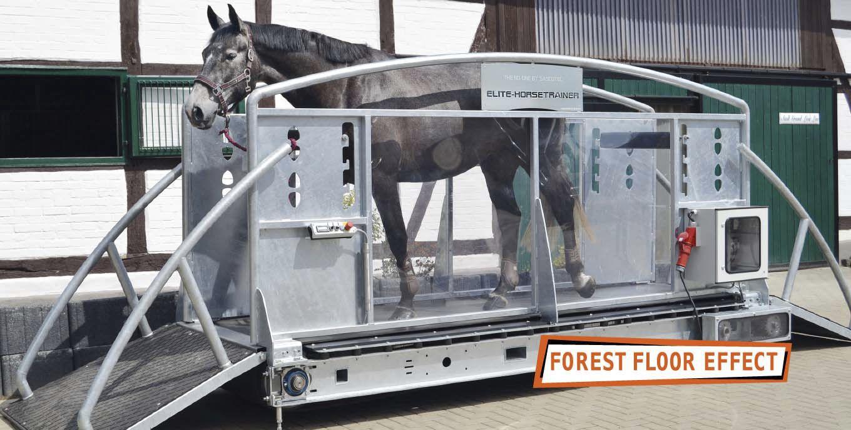 Laufband Für Pferde