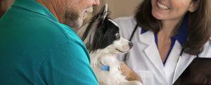 Management-Software / für Fortbildungen / Veterinär / für veterinärmedizinische Einrichtungen