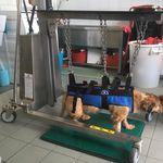 Vielzweckwagen / Notfall / für Verbandmaterial / Sterilisation