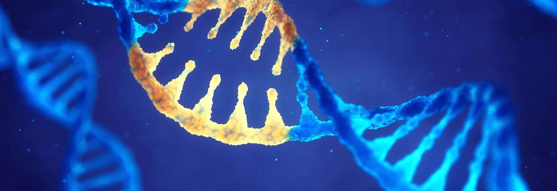 Chinesische Wissenschaftler versuchten, HIV mit CRISPR zu behandeln