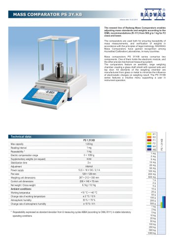 PRECISION BALANCES PS 3Y