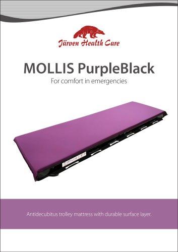 Mollis PurpleBlack